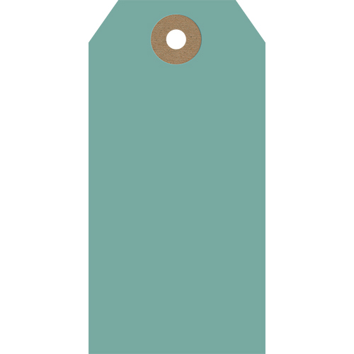 Teal (Pack of 5 Tags)