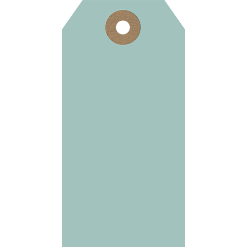 Duck Egg Blue (Pack of 5 Tags)