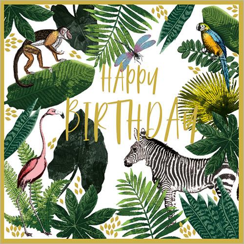 Wild (Happy Birthday)